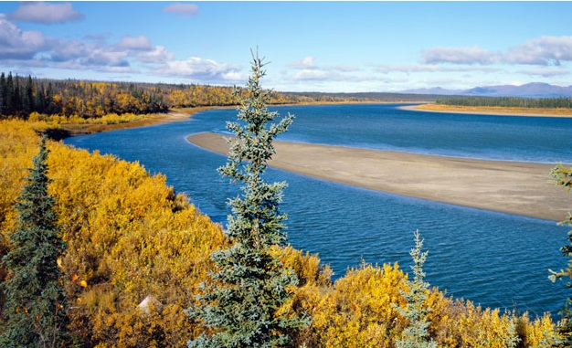 Welcome to Kobuk Valley National Park
